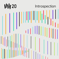 Vince Watson - VW20 : Introspection - Volume 4