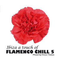 Victor Nebot - Ibiza A Touch of Flamenco Chill 5