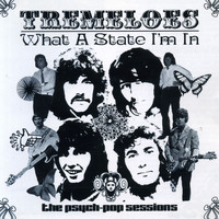 The Tremeloes - What a State I'm In: The Psych-Pop Sessions