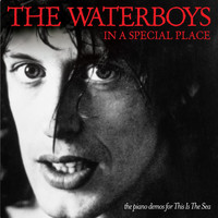 The Waterboys - In a Special Place: The Piano Demos for This Is the Sea