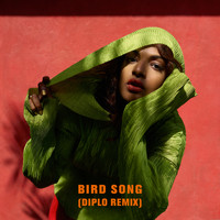 M.I.A. - Bird Song (Diplo Remix)