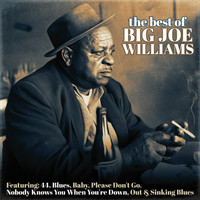 Big Joe Williams - The Best of Big Joe Williams