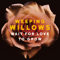 Weeping Willows - Wait for Love to Grow