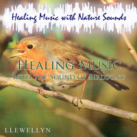Llewellyn - Healing Music with the Sound of Birdsong