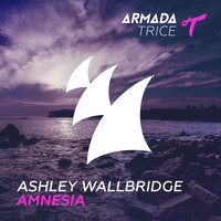 Ashley Wallbridge - Amnesia
