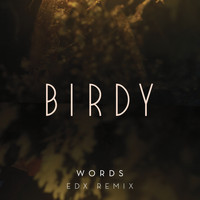 Birdy - Words (EDX Remix)