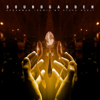 Soundgarden - Spoonman (Remix By Steve Aoki)