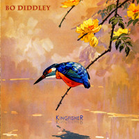 Bo Diddley - Kingfisher
