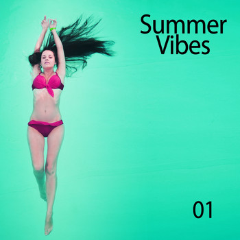 Various Artists - Summer Vibes, Vol. 01 (Explicit)