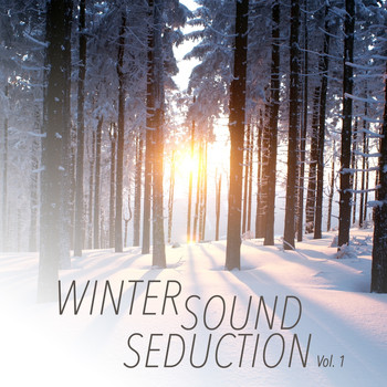 Various Artists - Winter Sound Seduction, Vol. 1