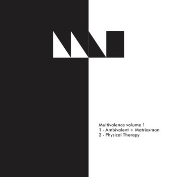 Various Artists - Multivalence Vol.1