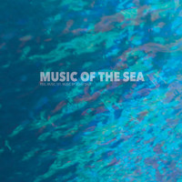 John Daly - Music of the Sea