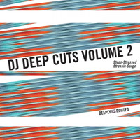 DJ Deep - Cuts, Vol. 2