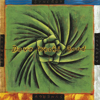 Dave Weckl Band - Synergy