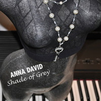 Anna David - Shade of Grey