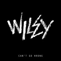 Wiley - Can't Go Wrong