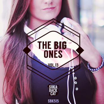 Various Artists - The Big Ones, Vol. 13