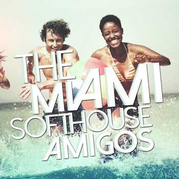 Various Artists - The Miami Softhouse Amigos