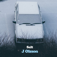 J Olsson - Salt