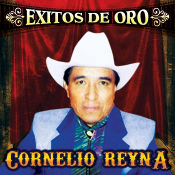 Cornelio Reyna - Me Cai De La Nube / La Grandeza Que Te Di