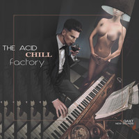 Various Artists - The Acid Chill Factory (QAXT New Sounds)