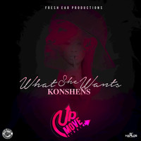 Konshens - What She Wants - Single