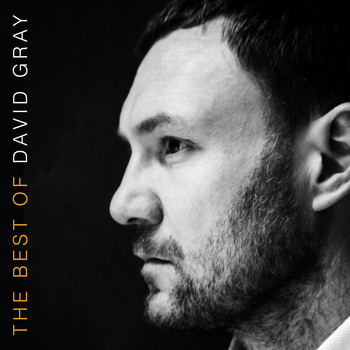 David Gray - The Best of David Gray