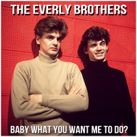 The Everly Brothers - Baby What You Want Me to Do?