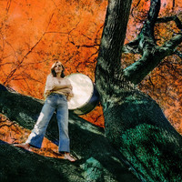 Tift Merritt - Love Soldiers On
