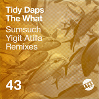 Tidy Daps - Attention