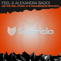 Feel & Alexandra Badoi - Did We Feel (Remixes)