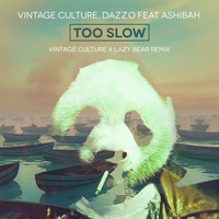 Vintage Culture - To Slow