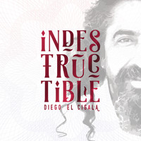 Diego el Cigala - Indestructible