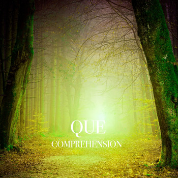 Que - Comprehension