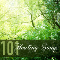 Traditional Japanese Music Ensemble - 101 Healing Songs - Chinese and Japanese Meditation Zen Music for Balancing Chakras
