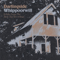 Darlingside - Whippoorwill