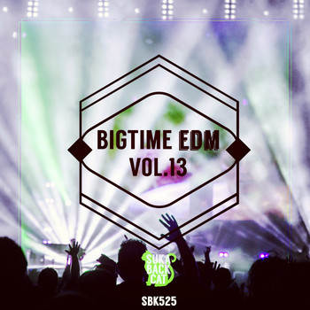 Various Artists - Bigtime EDM, Vol. 13