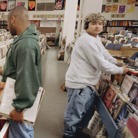DJ Shadow - Endtroducing (Endtroducing Re-Emagined [Explicit])