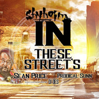 Shyheim - In These Streets (feat. Sean Price, Prodigal Sunn & DJ Des)