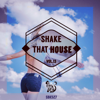 Various Artists - Shake That House, Vol. 13