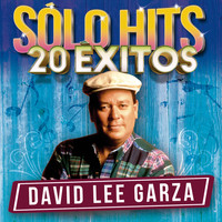 David Lee Garza - Sólo Hits (20 Éxitos)