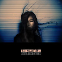 Stella in the Clouds - Awake We Dream