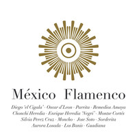 Various Artists - México Flamenco