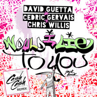 David Guetta & Cedric Gervais & Chris Willis - Would I Lie To You (Cash Cash Remix)