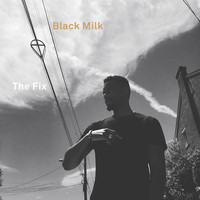 Black Milk - The Fix