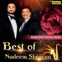 Nadeem - Shravan - Best of Nadeem Shravan Songs (With Jhankar Beats)