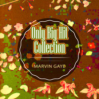 Marvin Gaye - Only Big Hit Collection