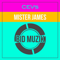 CEV's - Mister James (Original Mix)