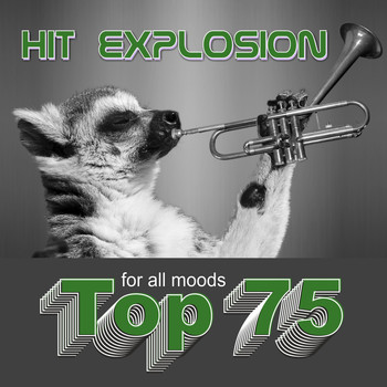 Various Artists - Hit Explosion: Top 75 for All Moods