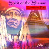 Niall - Spirit of the Shaman